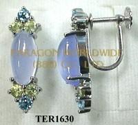 10K White Gold Earrings  Multi - TER1630