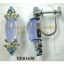 10K White Gold Earrings  Multi - TER1630